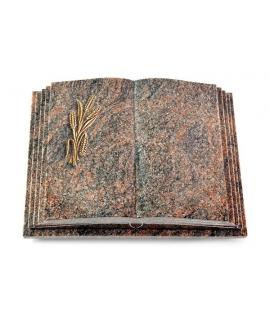 Livre Pagina/Aruba Ähren 1 (Bronze)