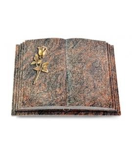 Livre Pagina/Aruba Rose 8 (Bronze)