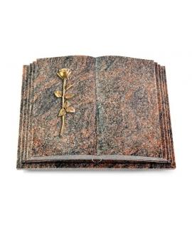 Livre Pagina/Aruba Rose 12 (Bronze)