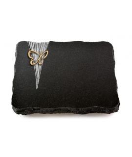 Indisch Black Delta Lilie (Bronze)