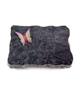 Omega Marmor/Pure Papillon 1 (Color)
