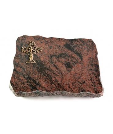 Aruba Pure Baum 1 (Bronze)