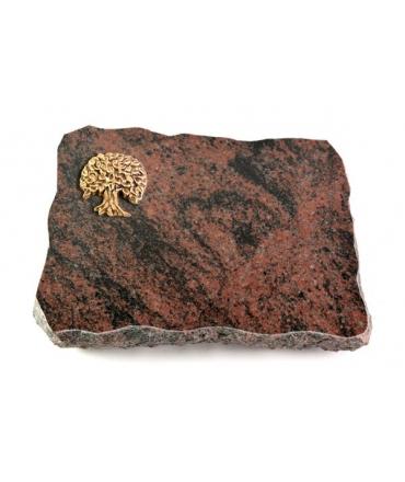 Aruba Pure Baum 2 (Bronze)