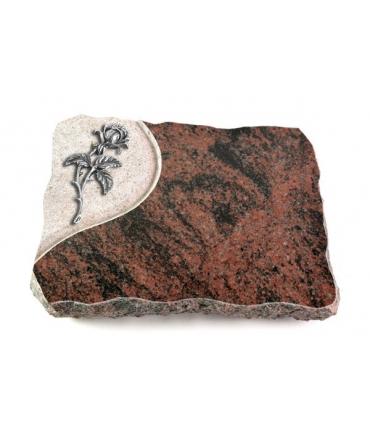 Aruba Folio Rose 1 (Alu)