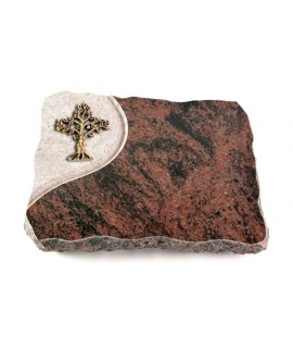 Aruba Folio Baum 1 (Bronze)