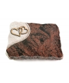 Aruba Folio Baum 3 (Bronze)