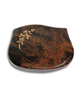 Cassiopeia/Indisch-Black Rose 5 (Bronze)