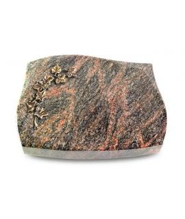 Galaxie/Aruba Efeu (Bronze)