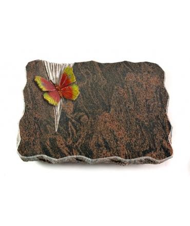 Barap Delta Papillon 1 (Color)