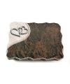 Barap Folio Baum 3 (Alu)