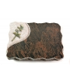 Barap Folio Rose 7 (Color)