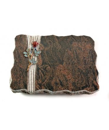 Barap Folio Rose 6 (Color)