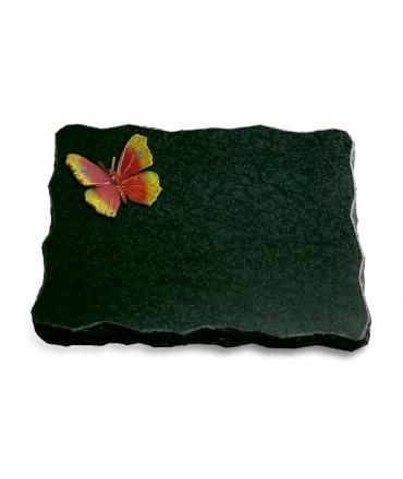 Diabas Pure Papillon 1 (Color)
