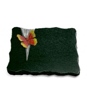 Diabas Delta Papillon 1 (Color)