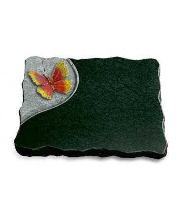Diabas Folio Papillon 1 (Color)