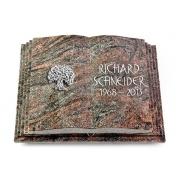 Grabbuch Livre Pagina / Paradiso
