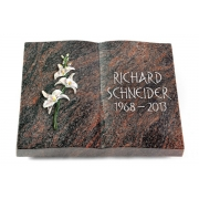 Grabbuch Livre / Himalaya mit Color-Bronze-Ornament